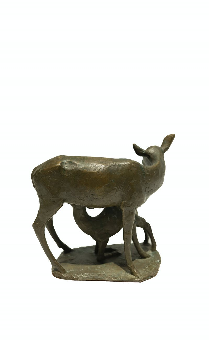 Deer and Fawn Image 2