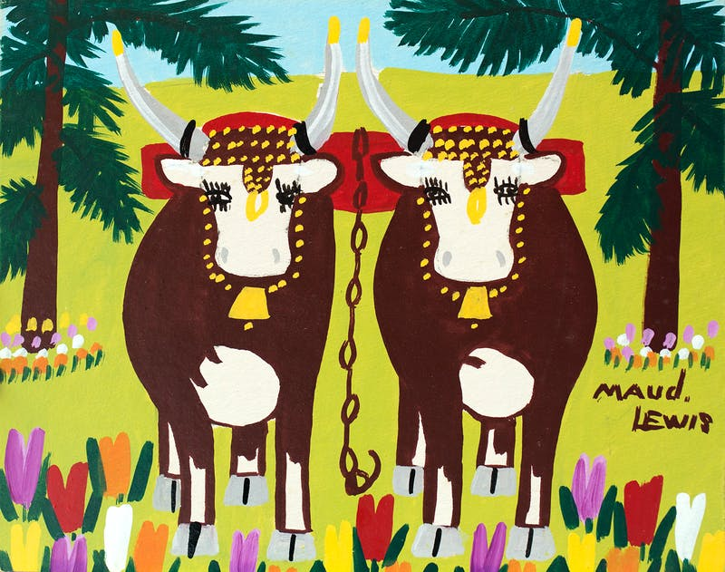 Summer Oxen With Tulips