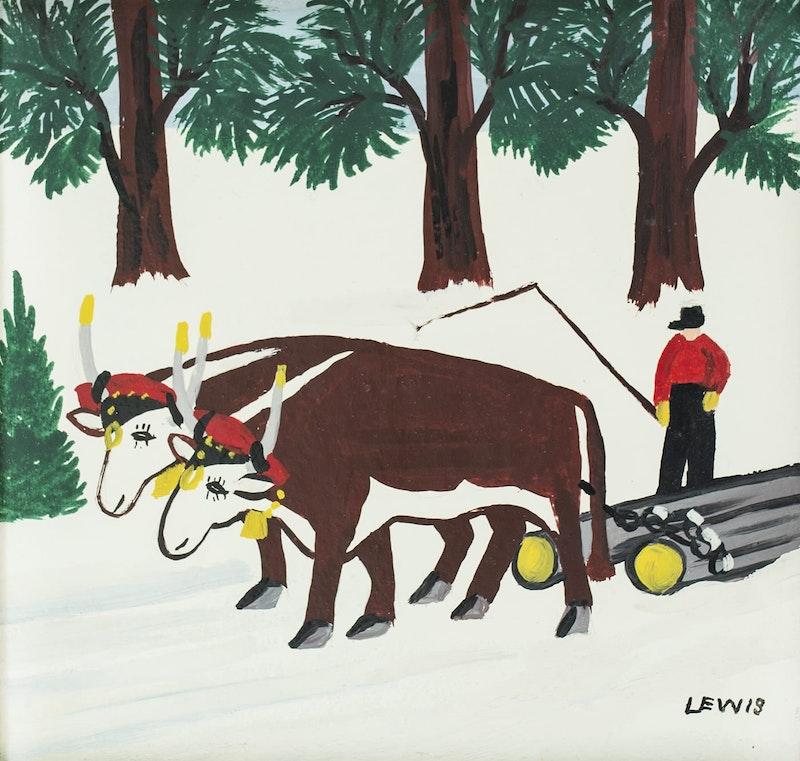 Oxen Image 2
