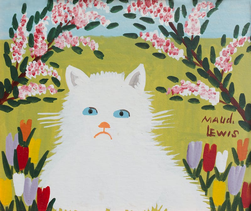 White Cat Image 2