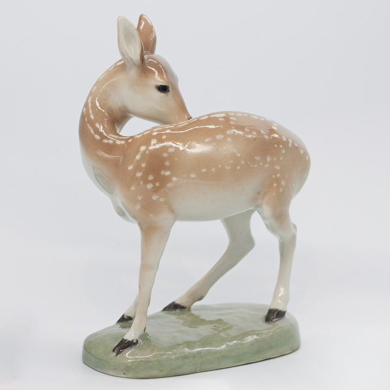 Fawn Image 2