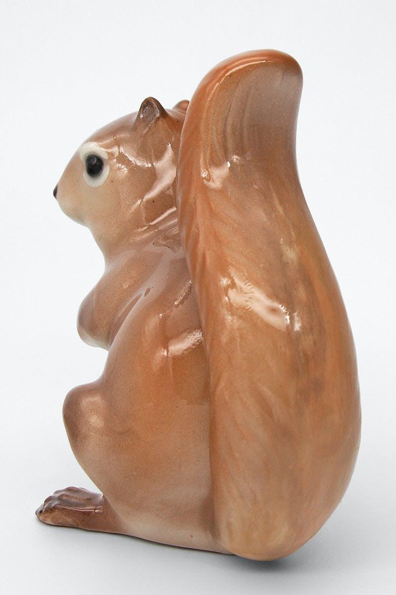 Squirrel Image 3