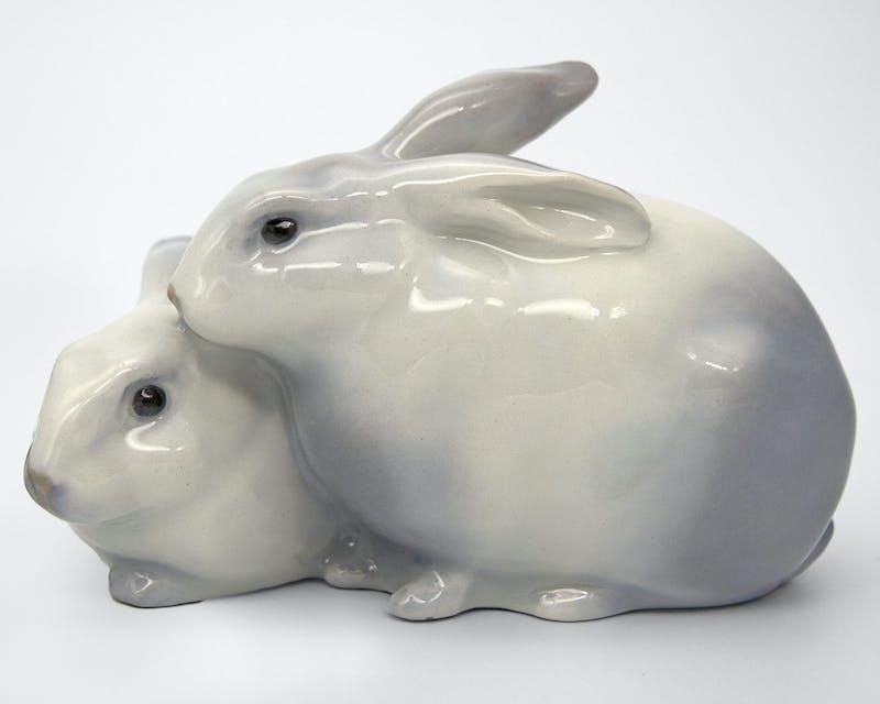 Rabbits Image 1