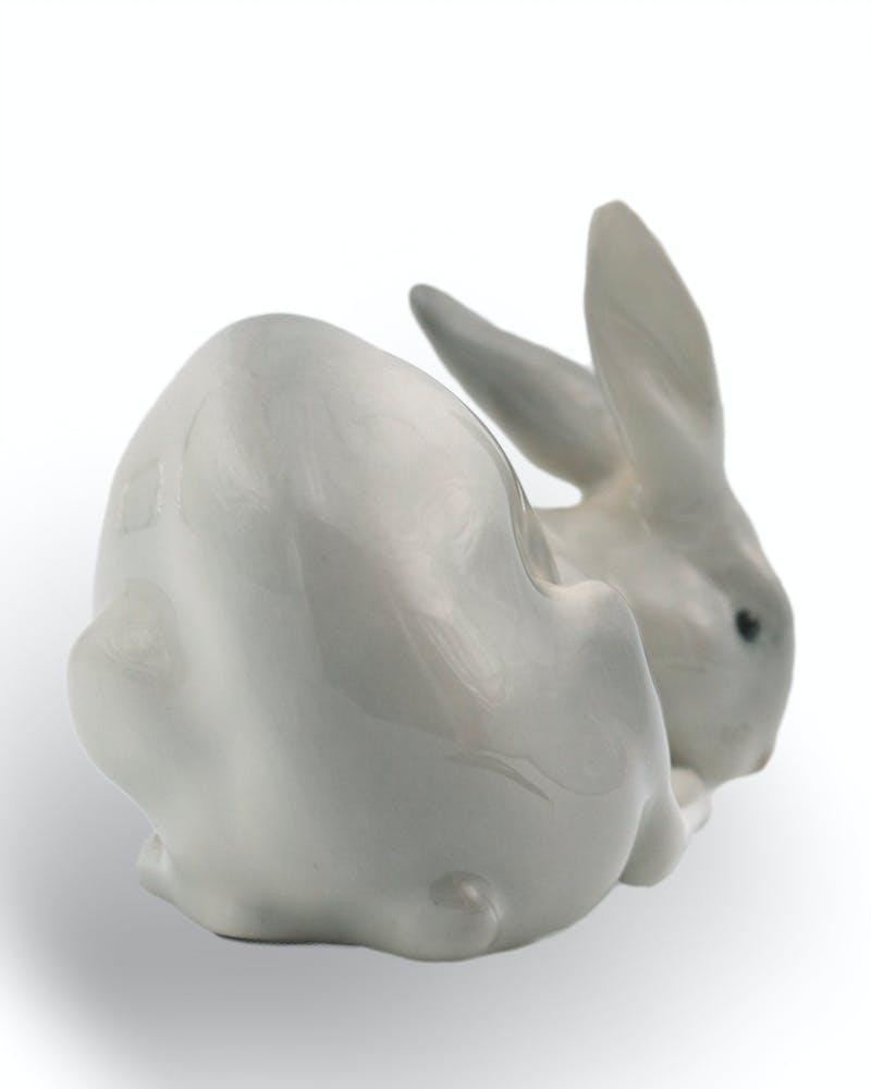 Rabbit Image 2