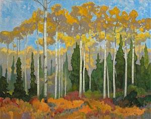 Poplars and Spruce