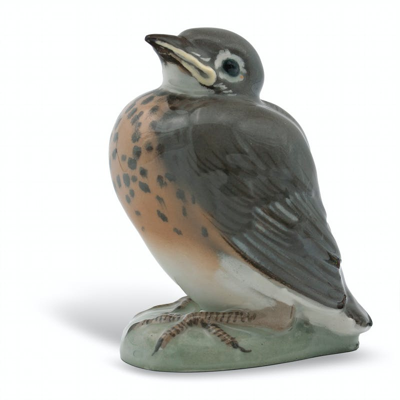 Robin Image 3