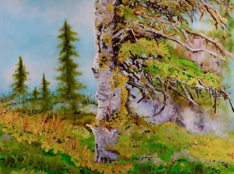 Windswept Image 1