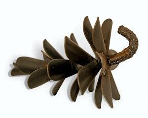Pine Cone #16-093