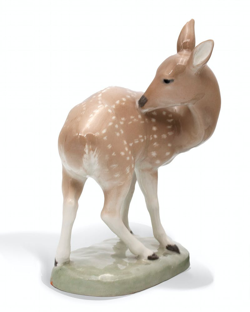 Fawn Image 1