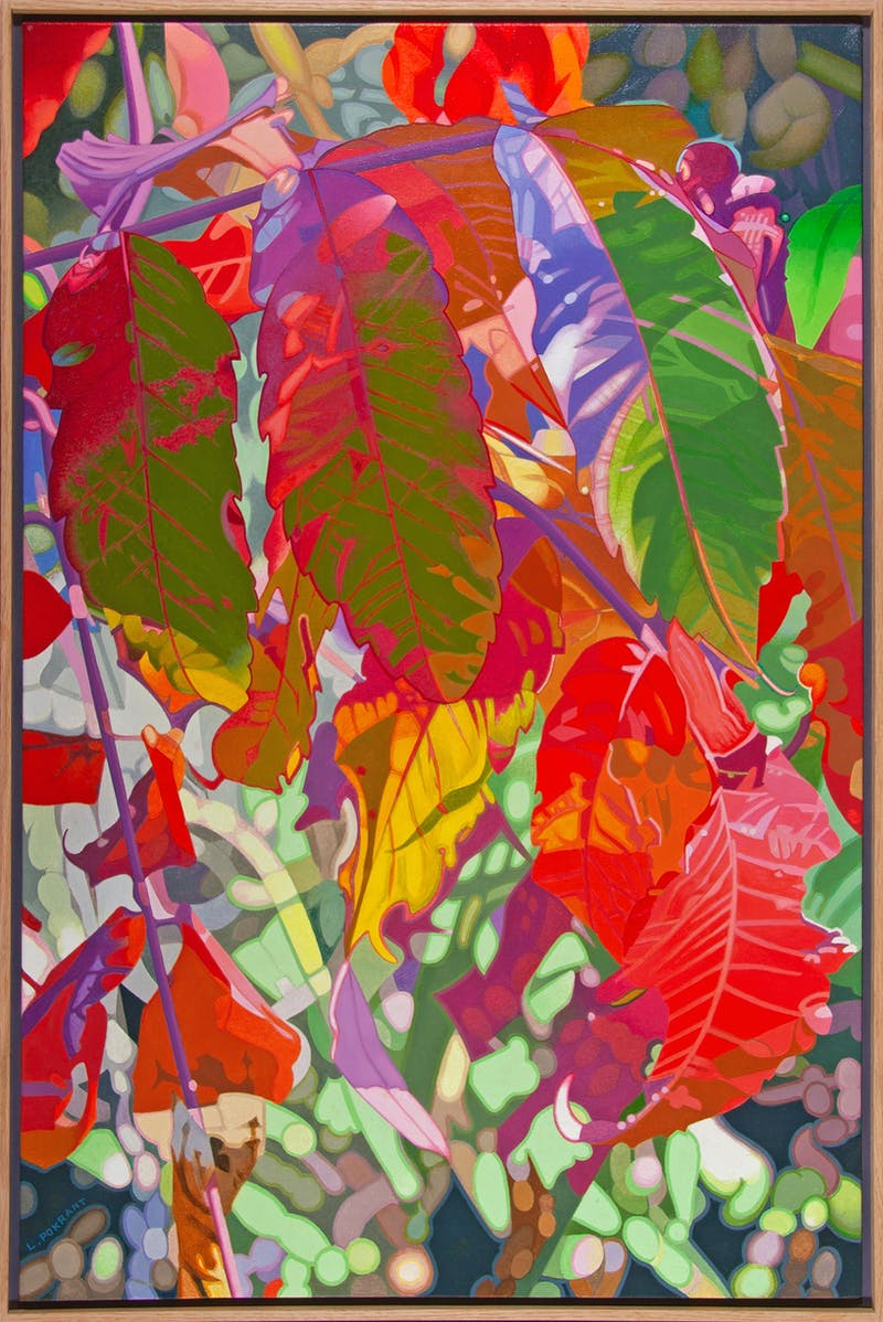Autumn Sumac Image 2