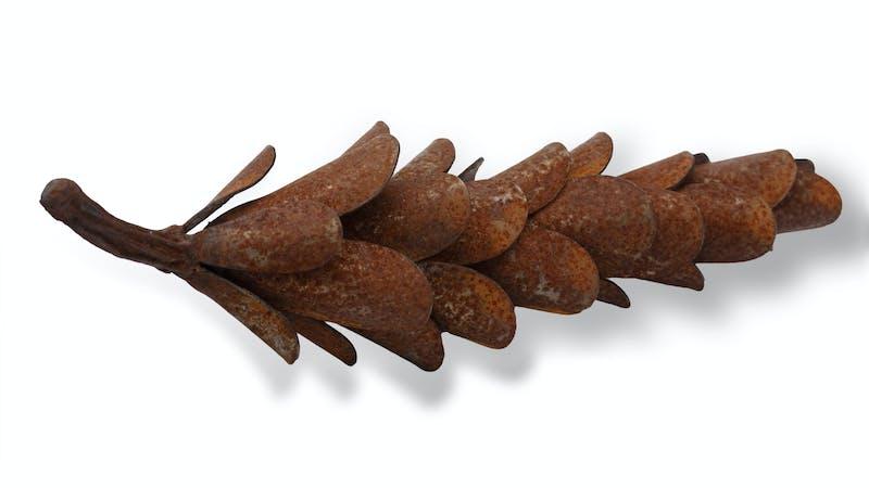 Pine Cone #18-366 Image 1