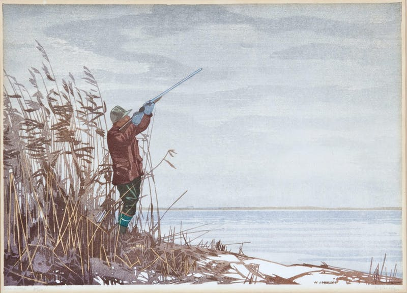 The Duck Hunter Image 1