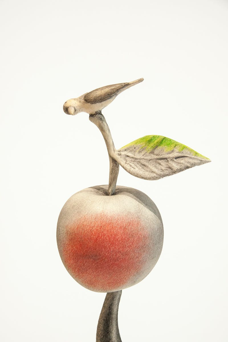 Balance - Pickaxe with Apple and Bird Image 3