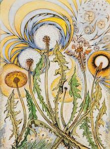 Dandelions Rejoicing 36/50