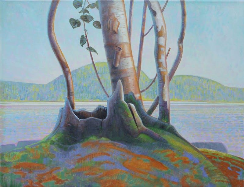 Birches Image 1