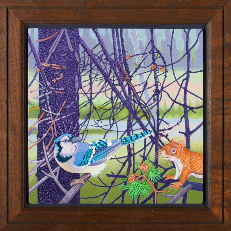 Blue Jay Image 3