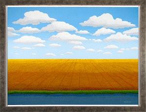 Prairie Patterns