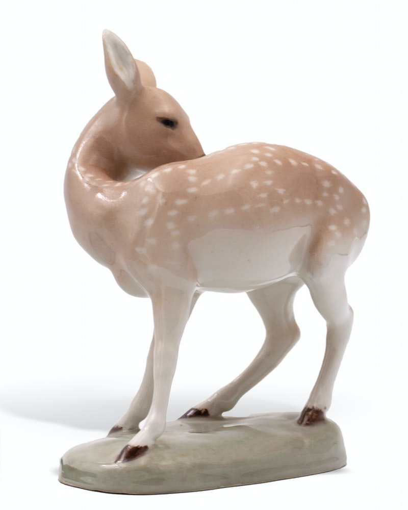 FAWN Image 3