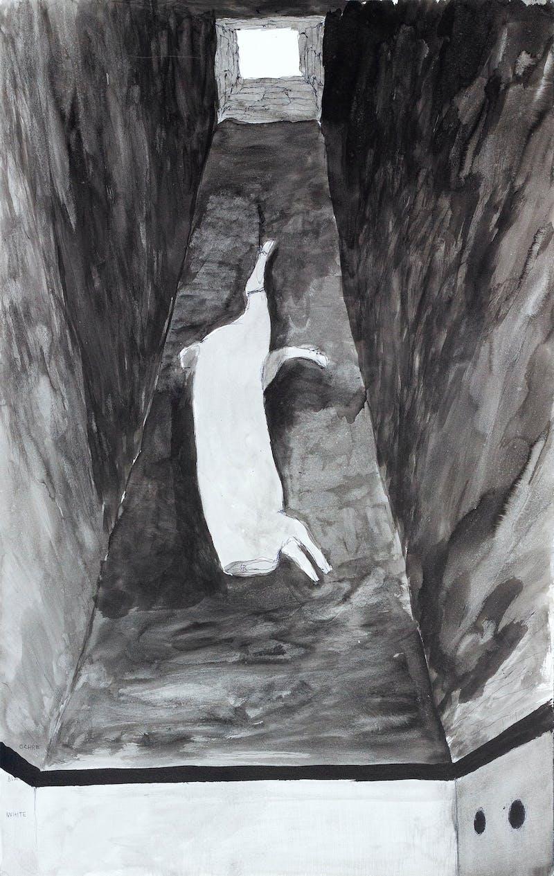 Slaughtered Pig Sketch Image 2