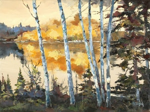 Birch Trees - Shoal Lake