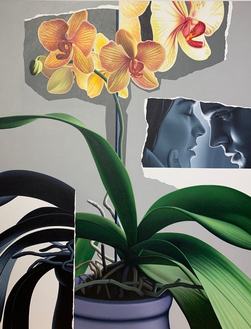 Wild Orchid Image 1