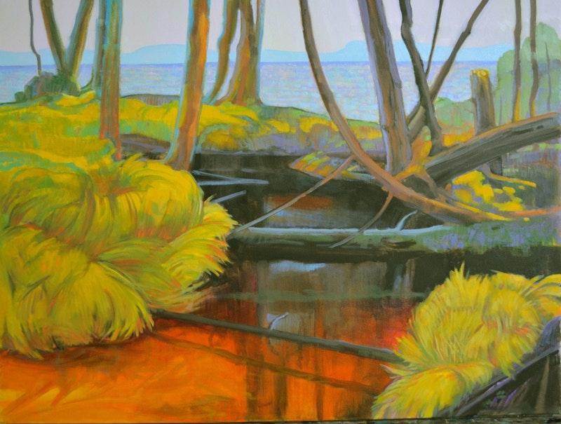 Tangled Creek Image 1