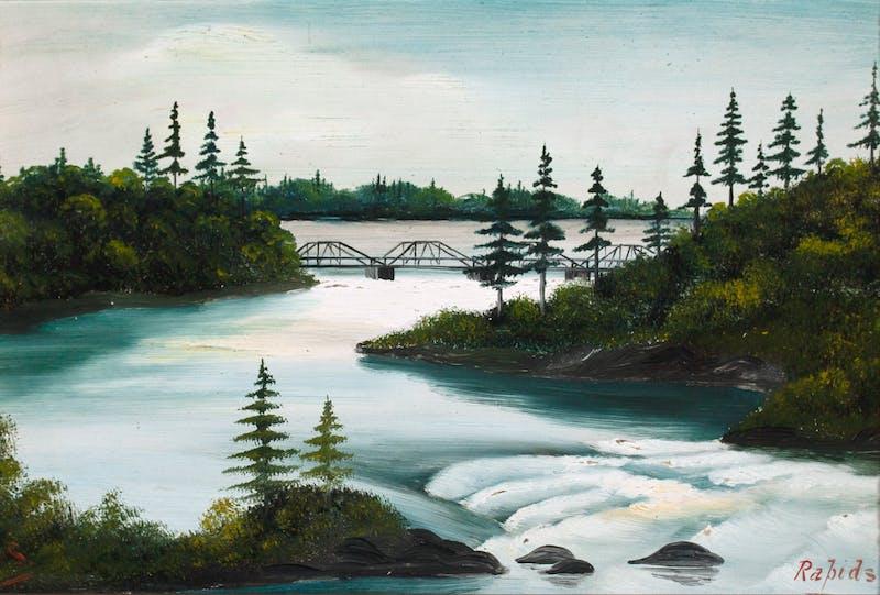 Rapids Image 2
