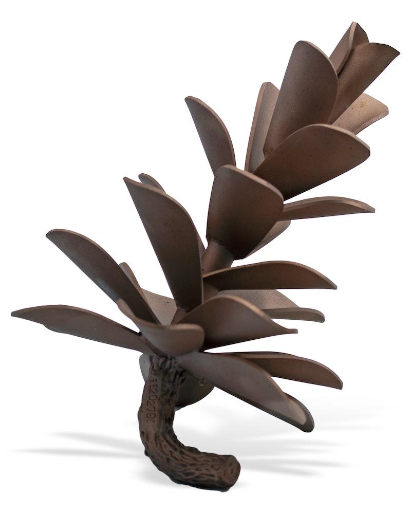 Pine Cone #20-279 Image 1
