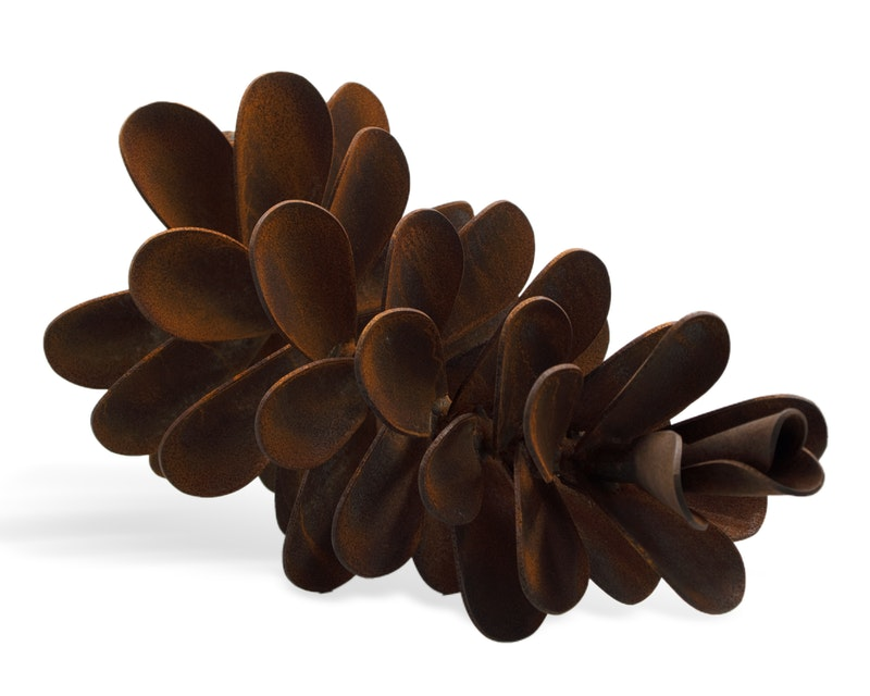 Pine Cone #20-288 Image 2