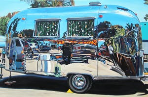 Airstream Banana Leaf Curtains