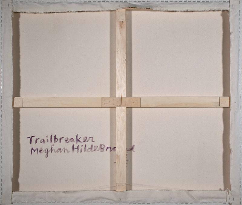 Trailbreaker Image 2