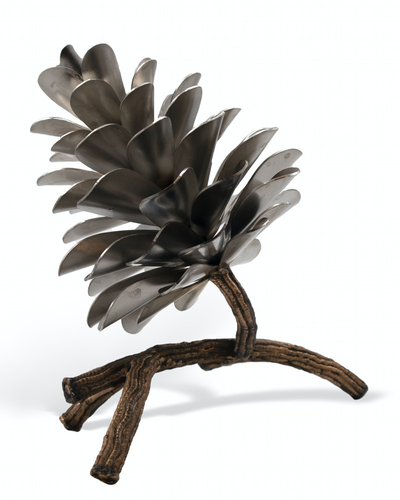Pine Cone on Branch #20-578 Image 2