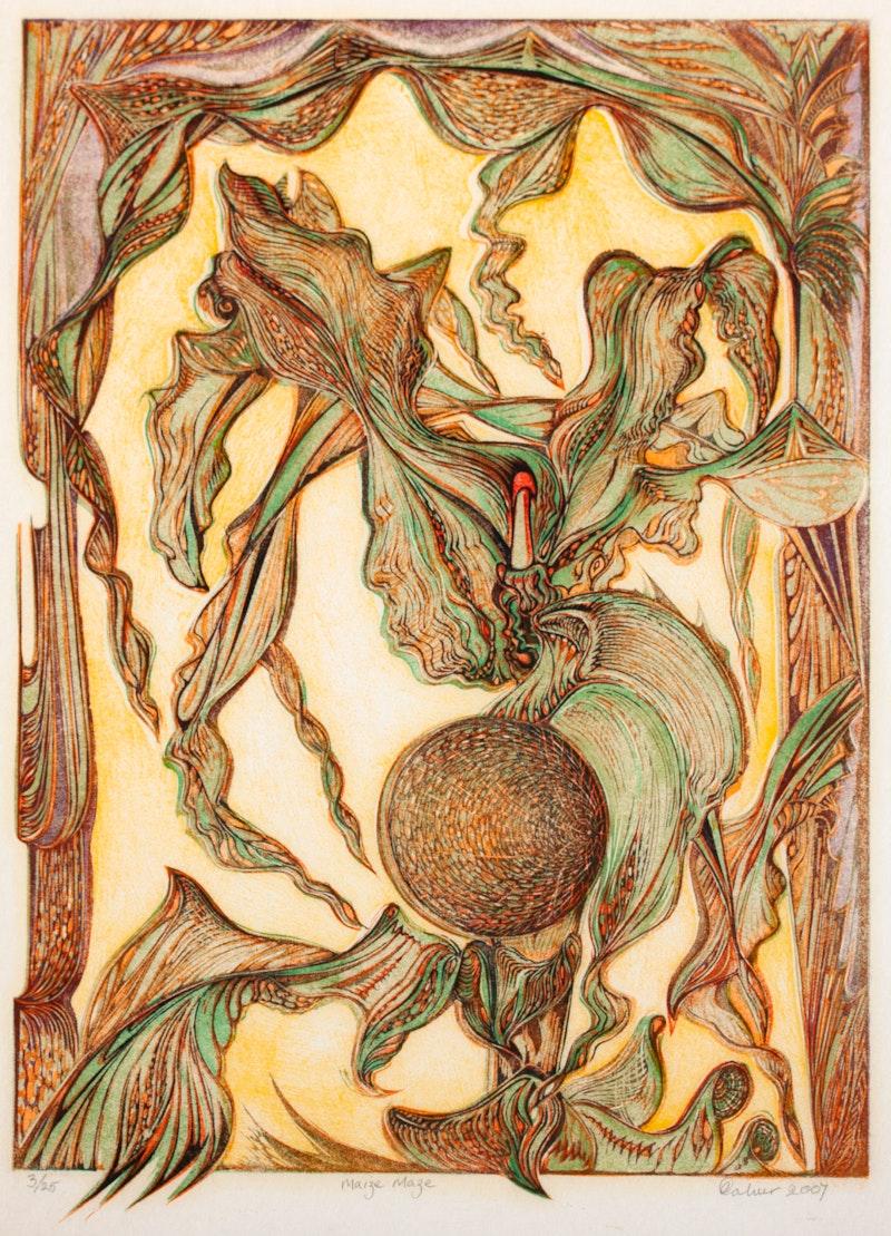 Maize Maze 3/25 Image 1
