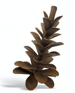 Pine Cone #20-496