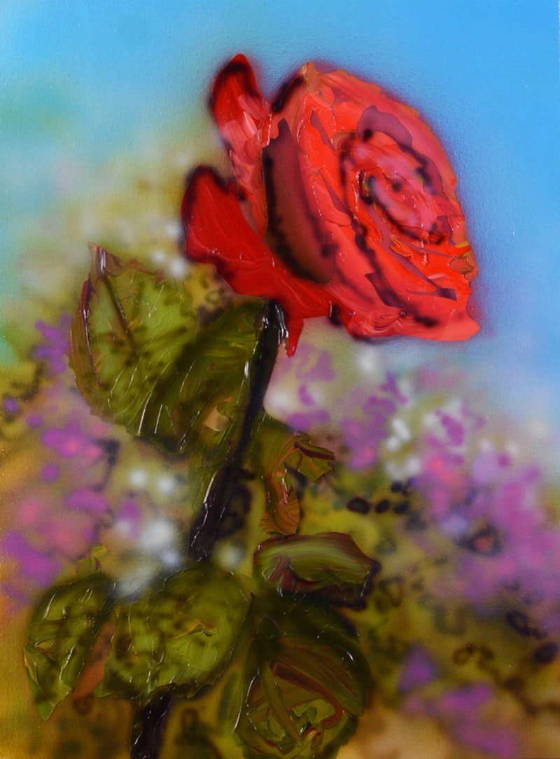 Single Rose Image 1