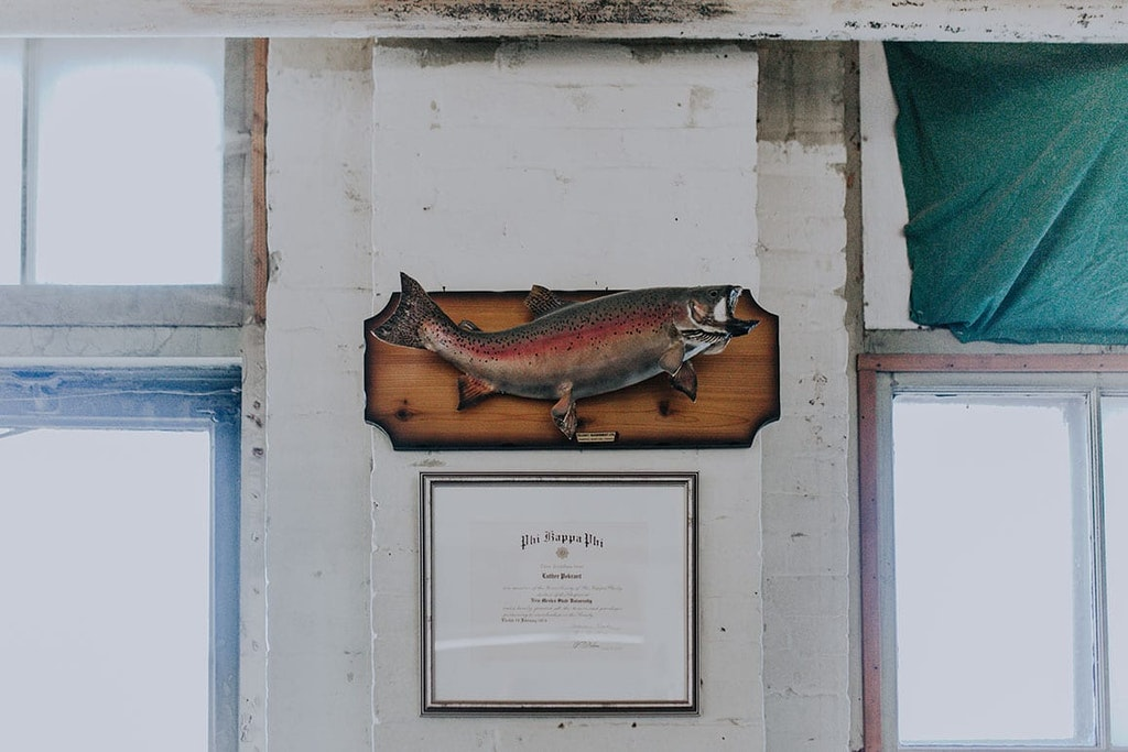 Home Decor, Window, Animal, Fish, Wood, Wall