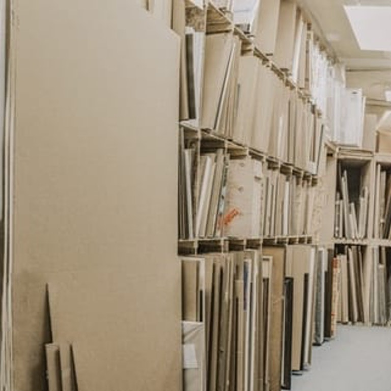 Shelf, Indoors, Room, Lighting, Furniture, Plant